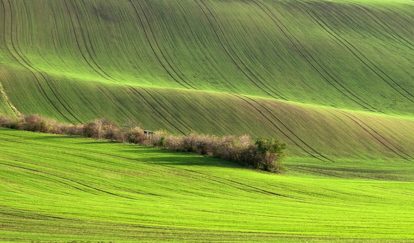 Moravské zvlnění