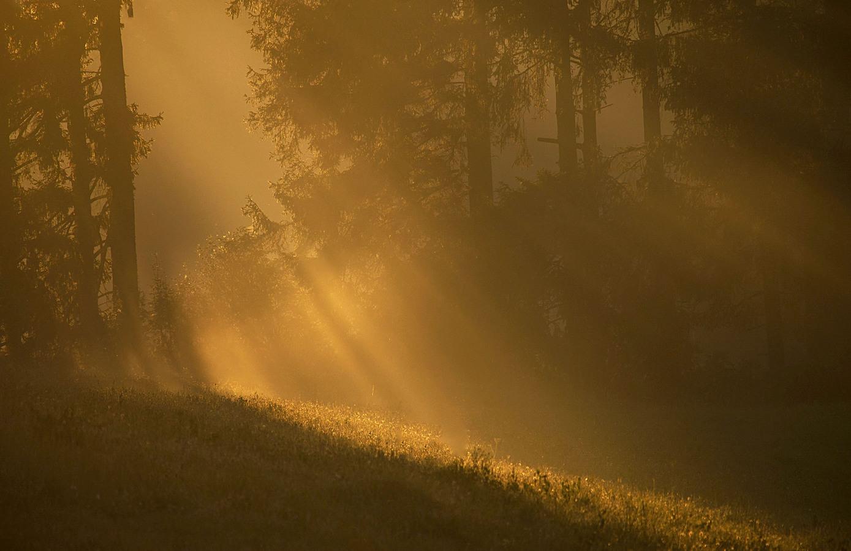 Putování za světlem....