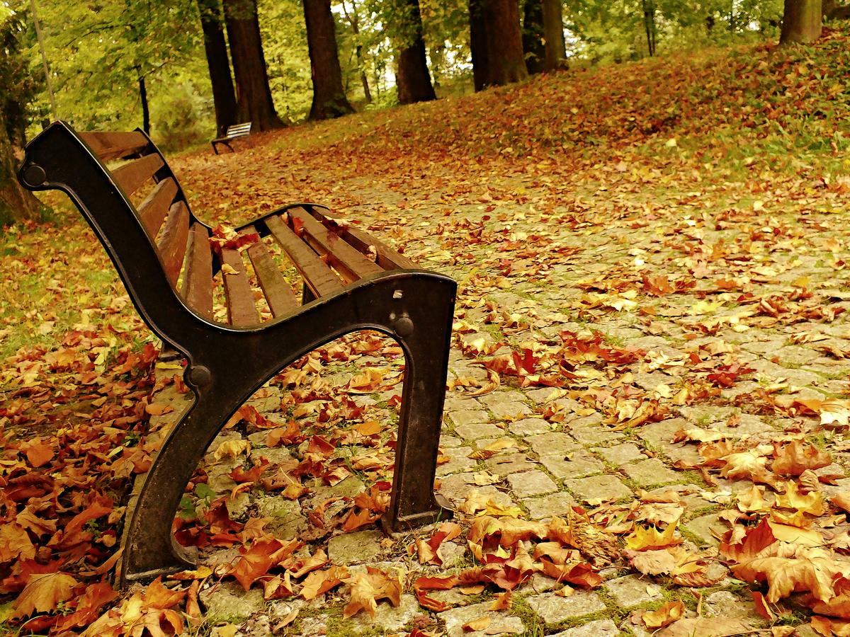 podzimní  osamocené lavičky
