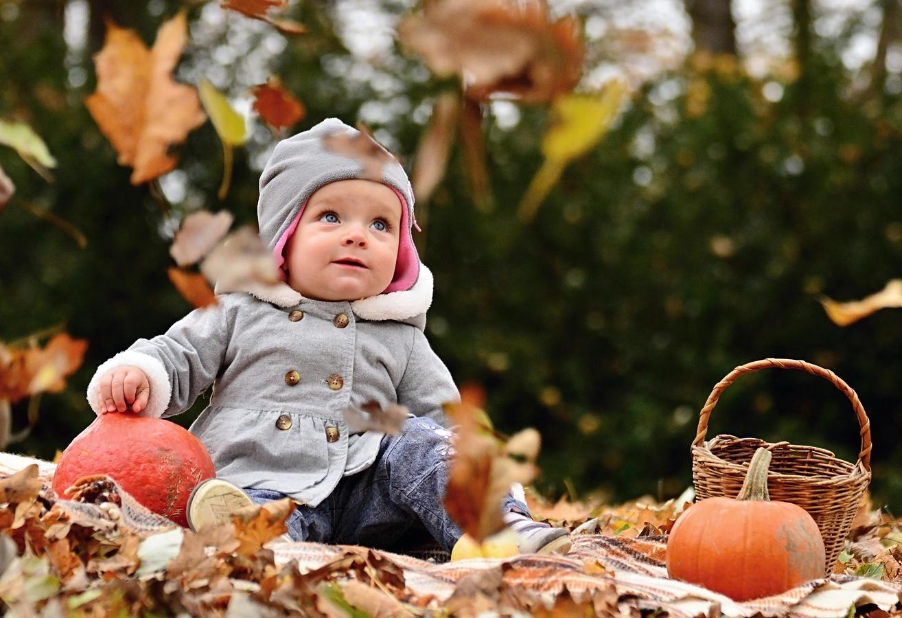 To ještě padalo listí...