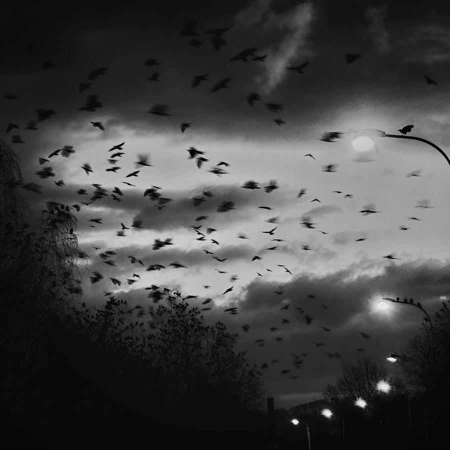 Temné kouty duše