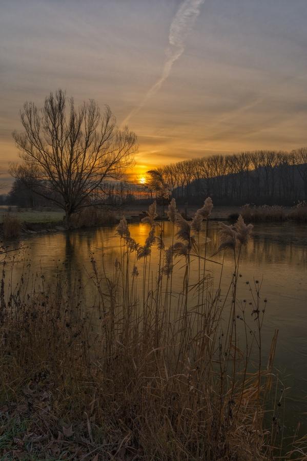 Ráno u rybníka