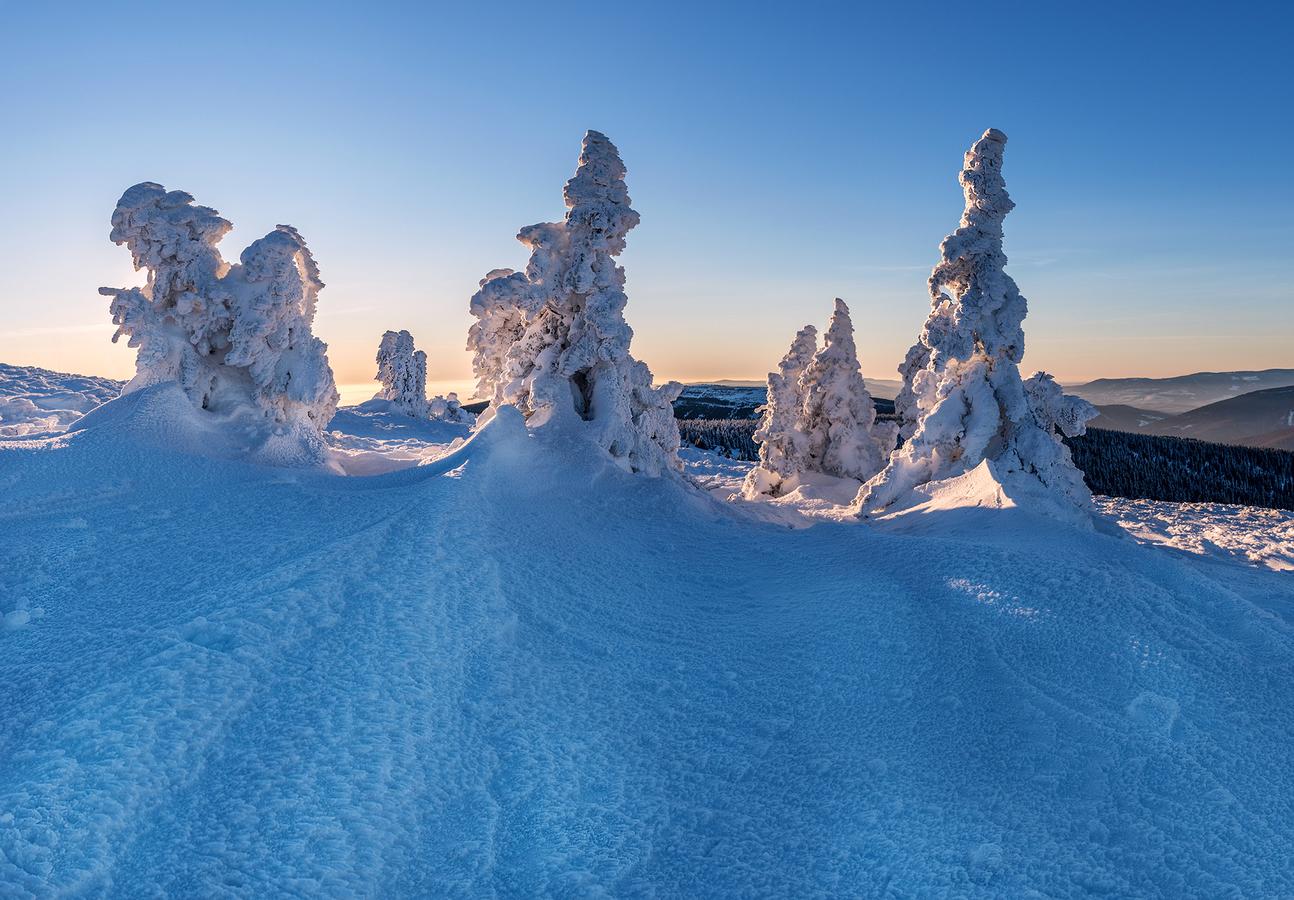 Sněžní muži