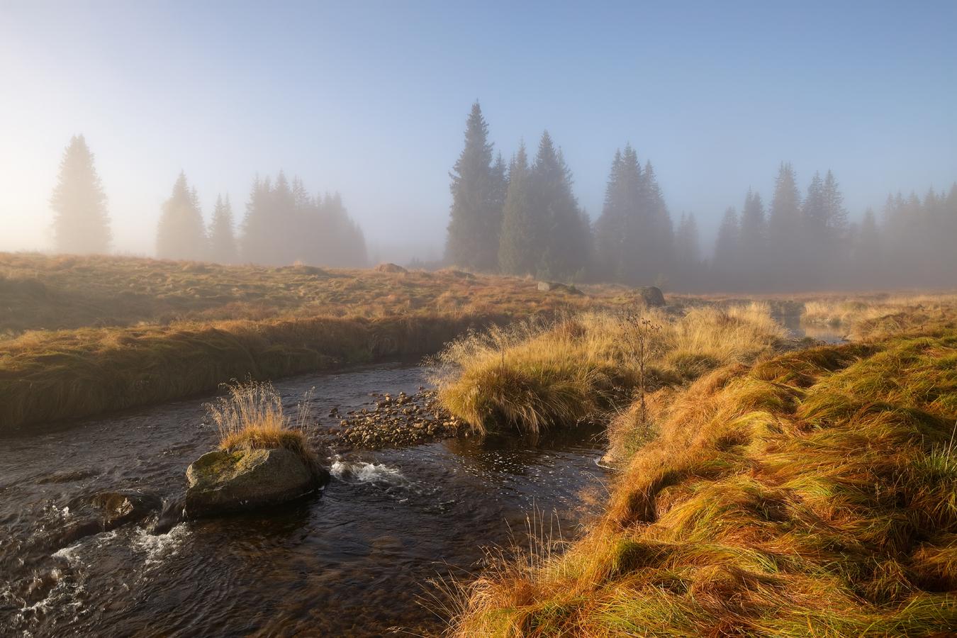 Šumava - podzim u Roklanského potoka