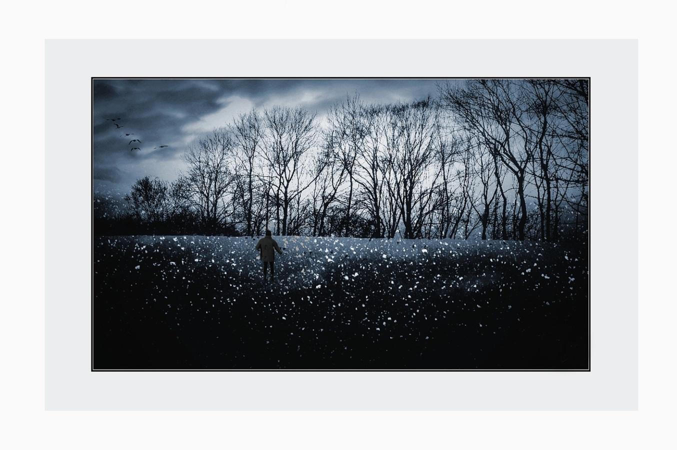 Zimní toulání