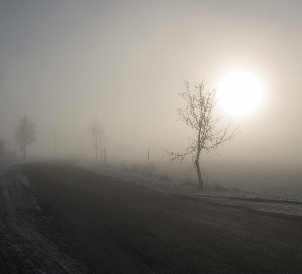 Mlha předemnou mlha za mnou