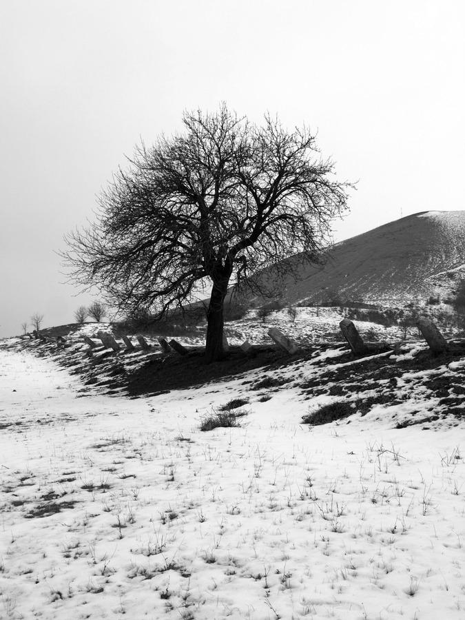 konec zimy