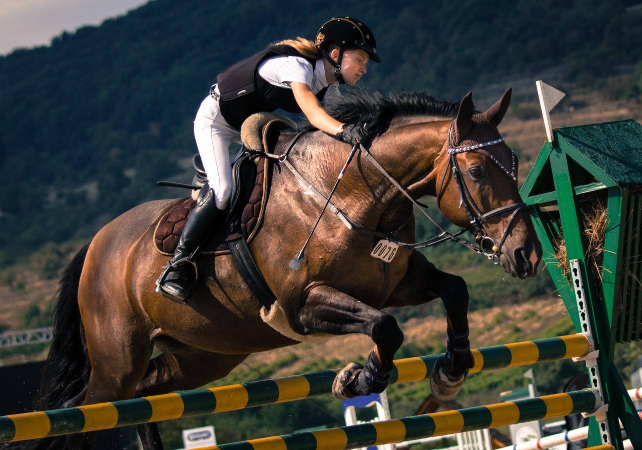 Hop a jedem dál, koni