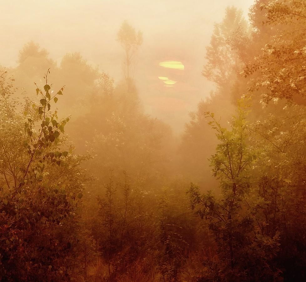 Ćervencové mlhavé ráno
