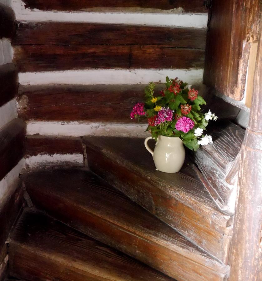 Kytka na schodech