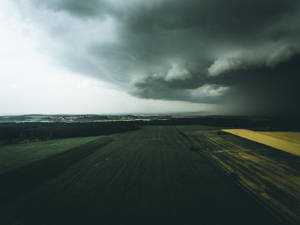 Pole před bouří