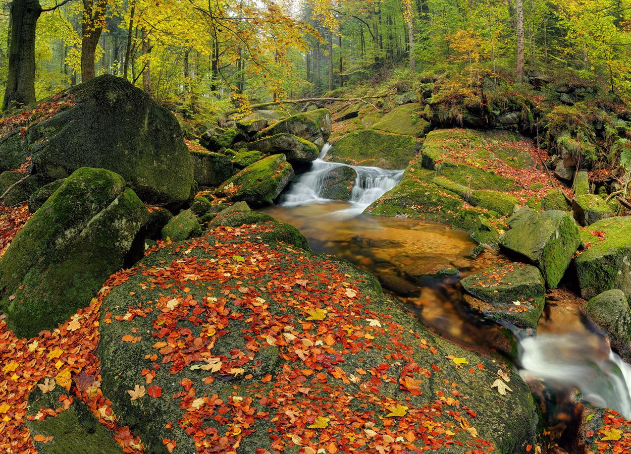 Hájený potok II