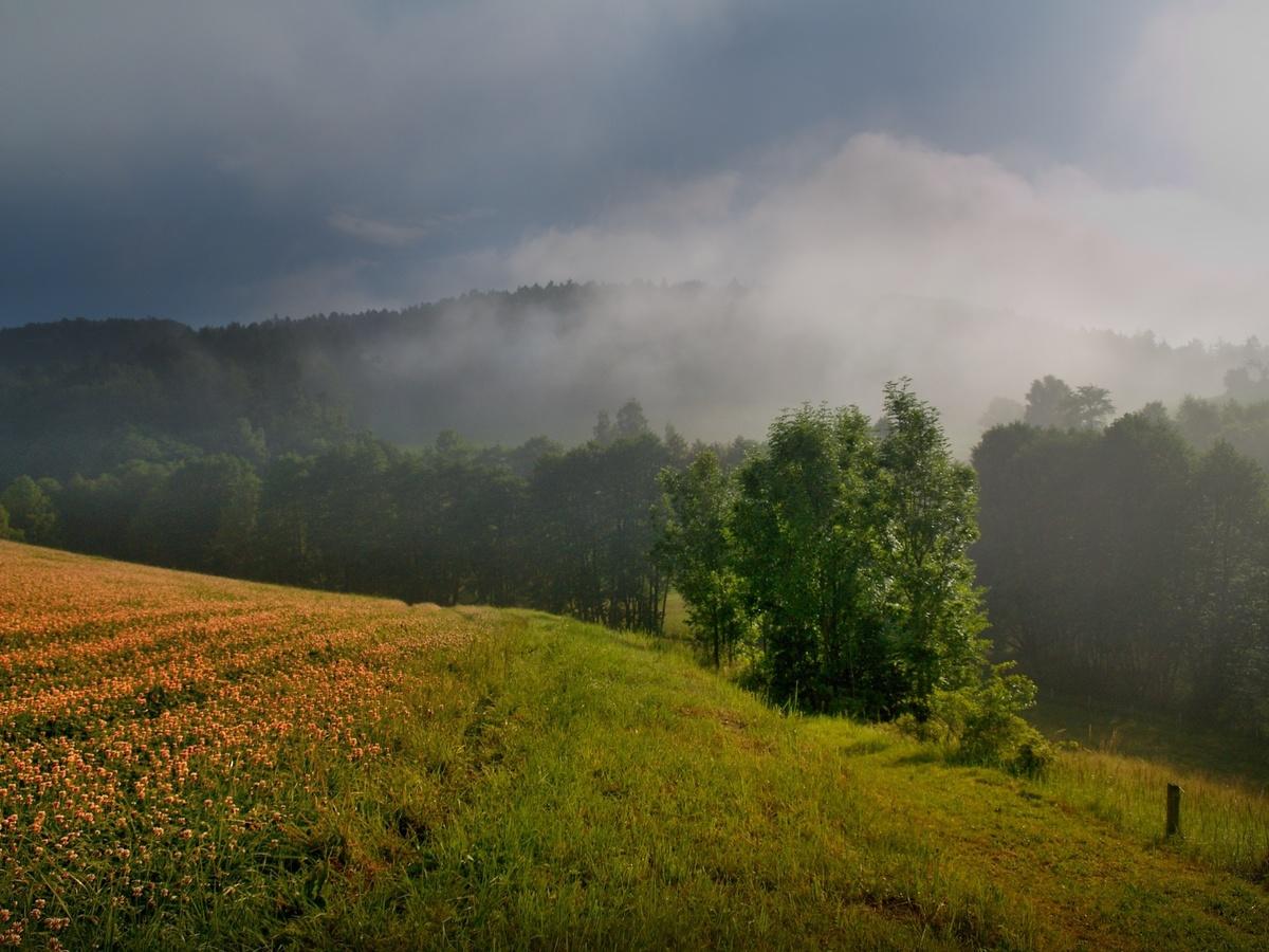 Mlha prohrává