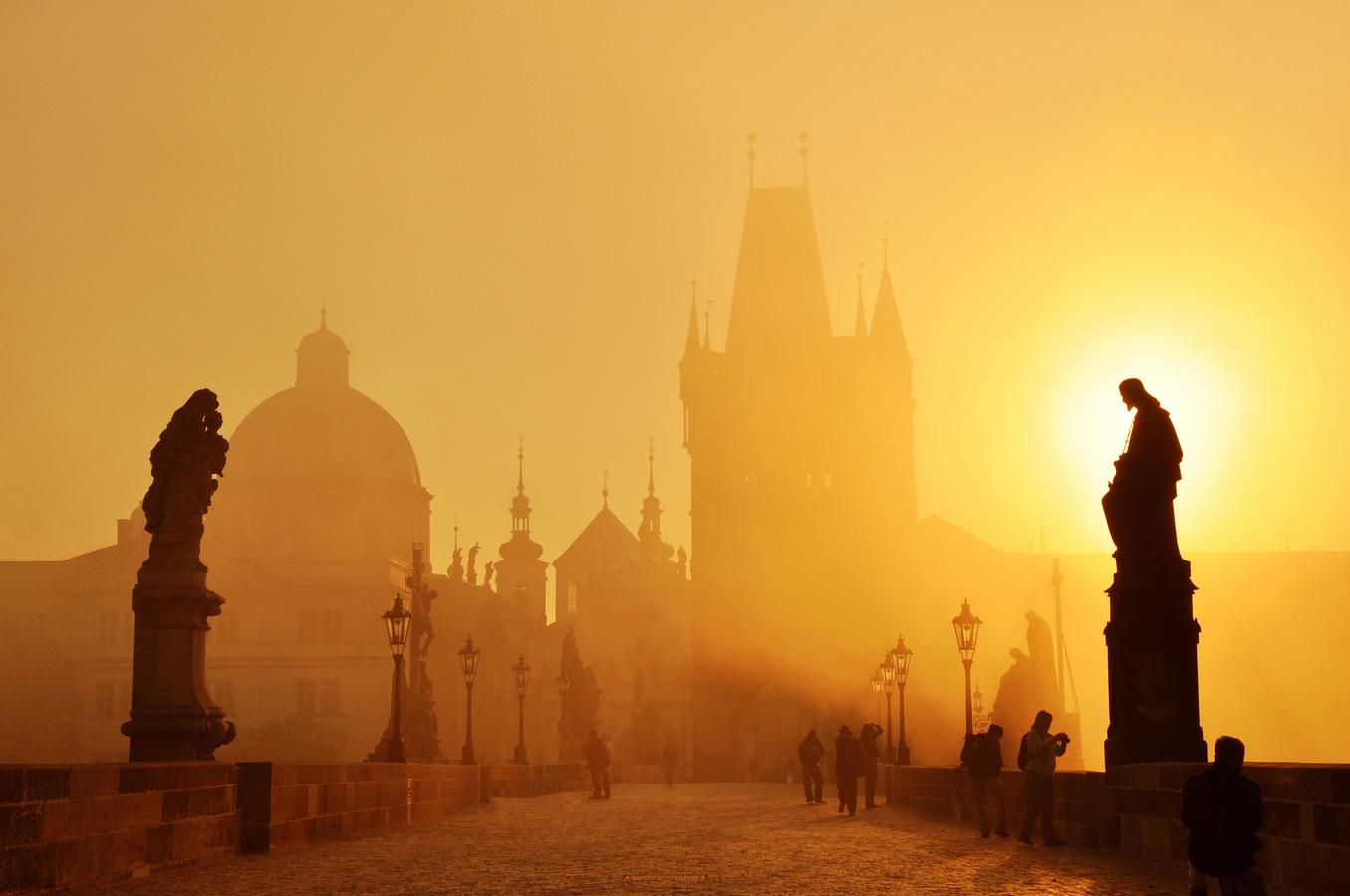 Mlha v paprscích slunce