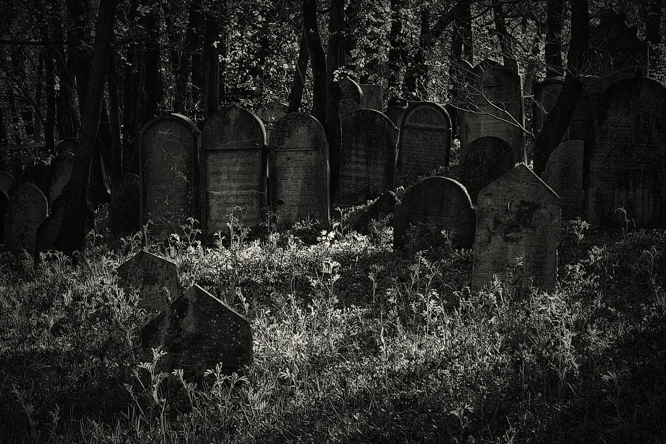 Ticho na hřbitově