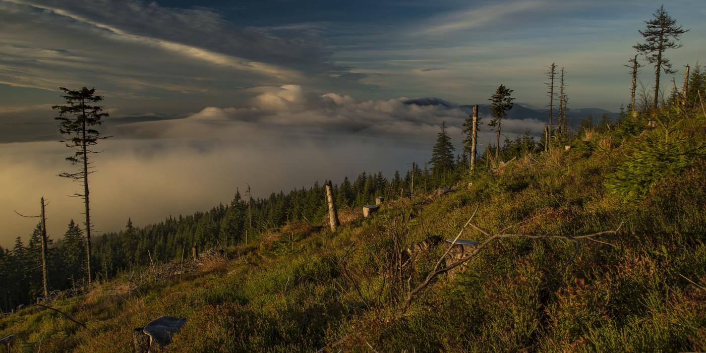 Údolí pod mlhou