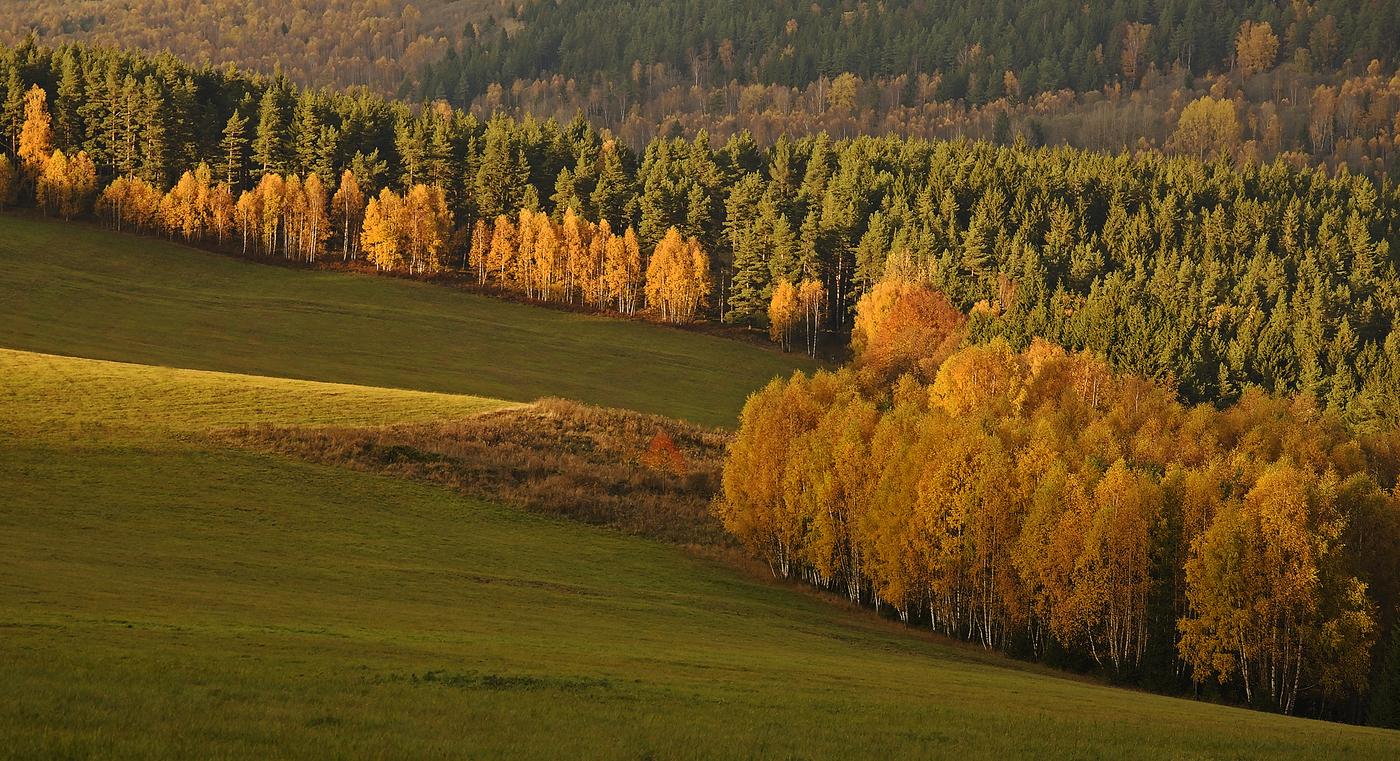 Podzim v šumavském Boru
