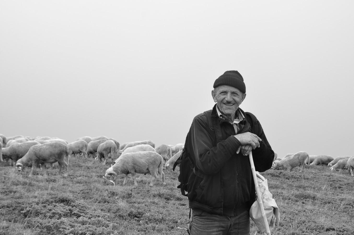 Makedonský pastýř