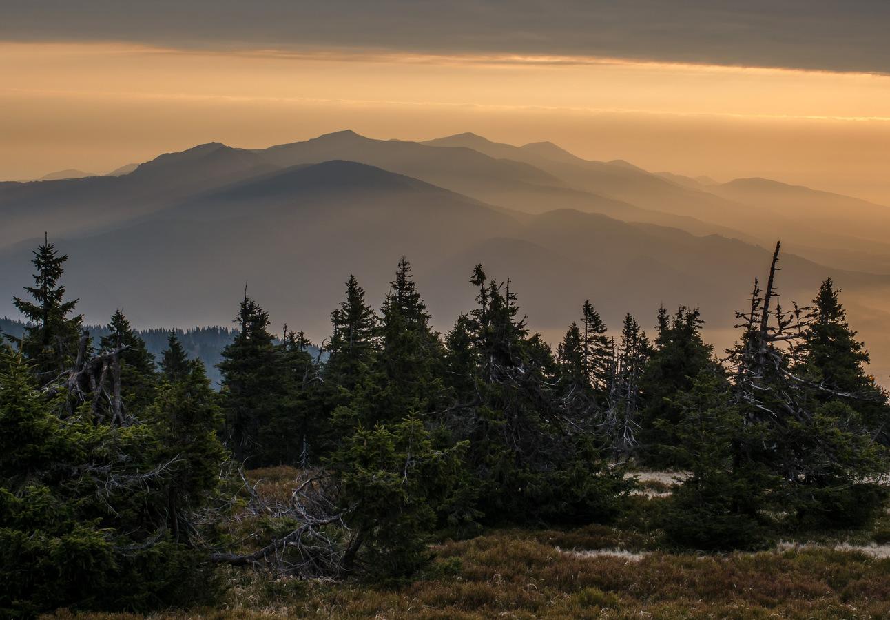 Dobré ráno hory, lesy.