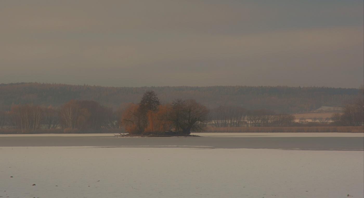 studené ráno u Horeckého rybníku.