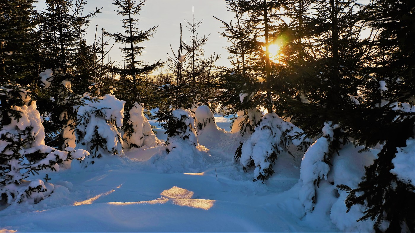 Poslední paprsky večerního slunce