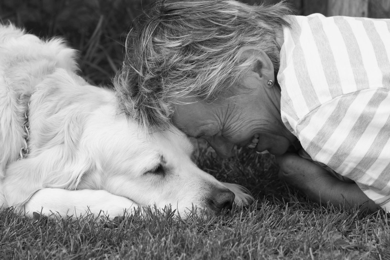 Přátelství je radost
