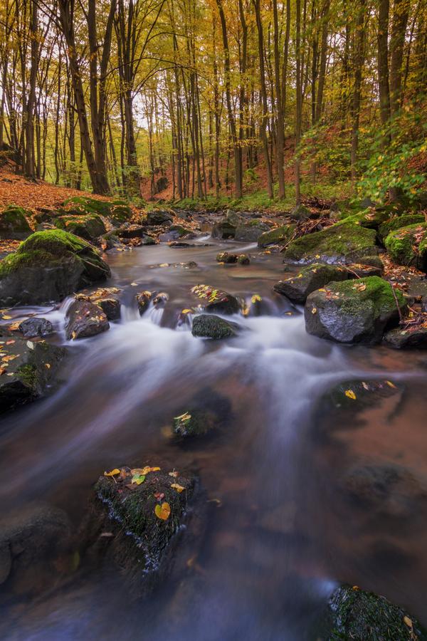 podzimní říčka Žejbro