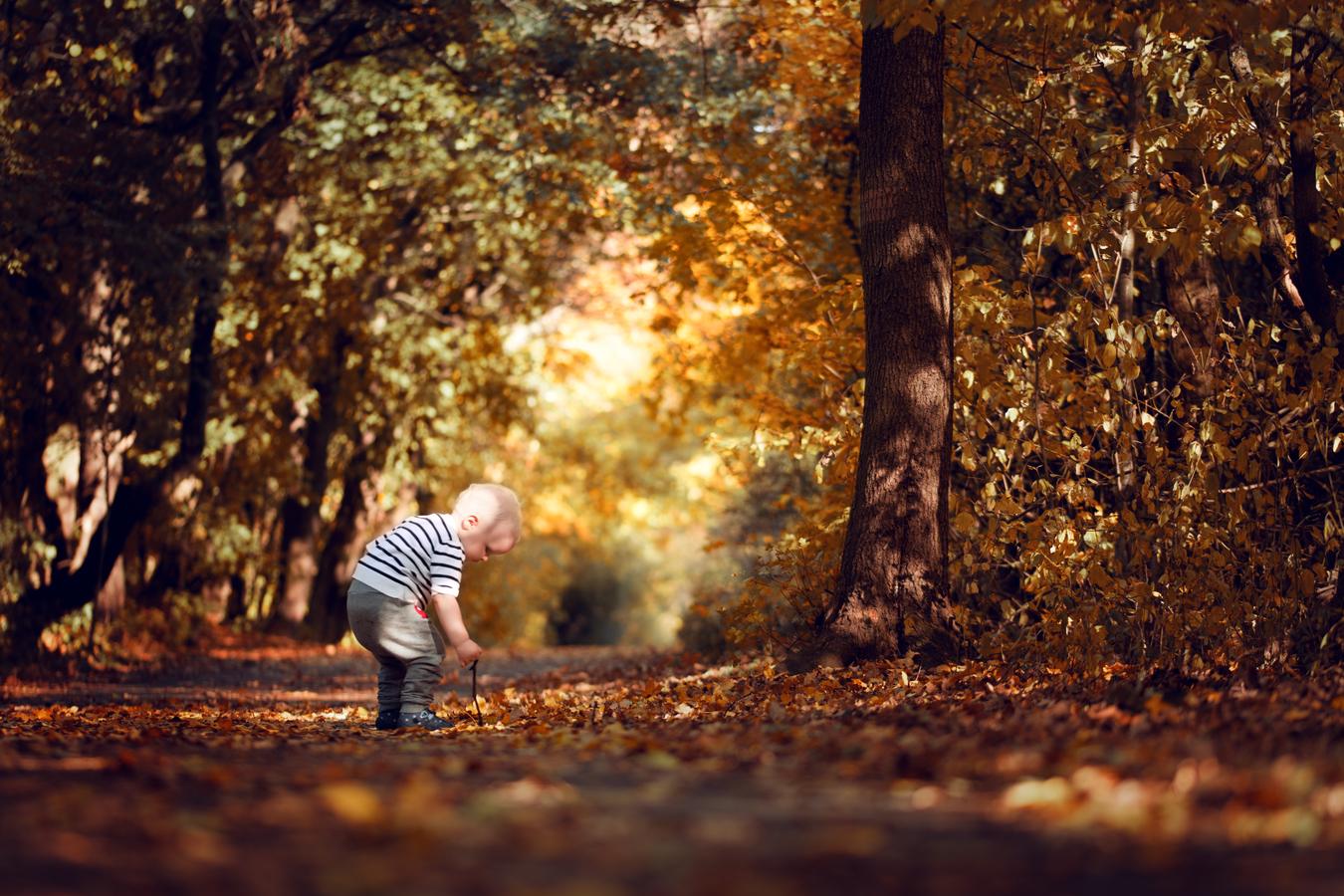 Náš podzim