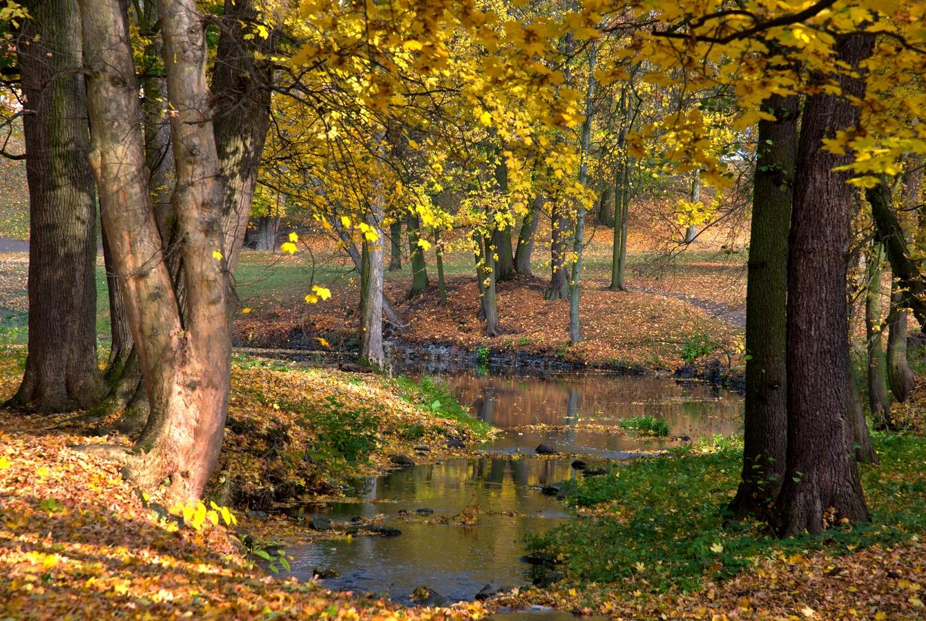 Podzimní potok