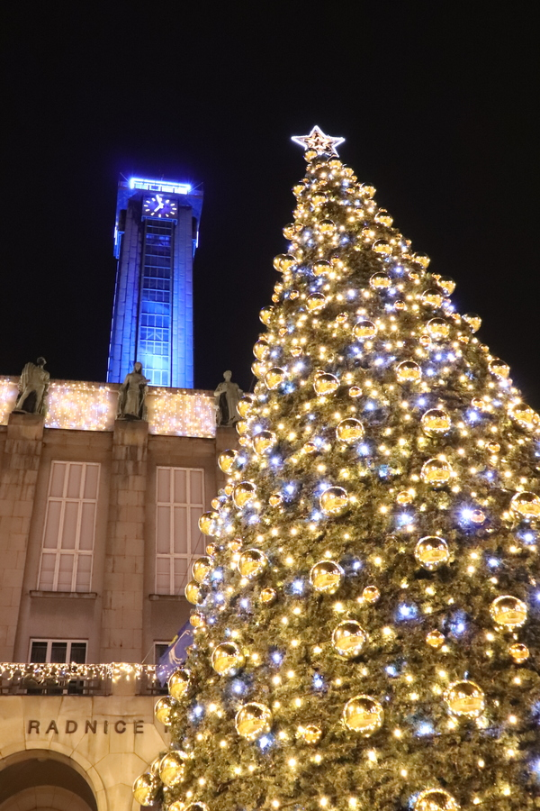Vánoční strom a radnice v Ostravě