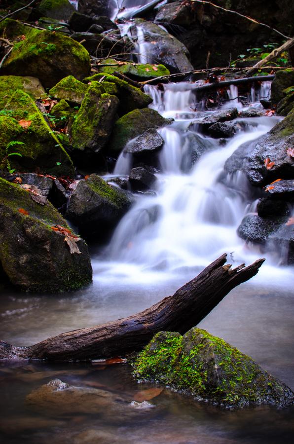 Potok v Jezerném