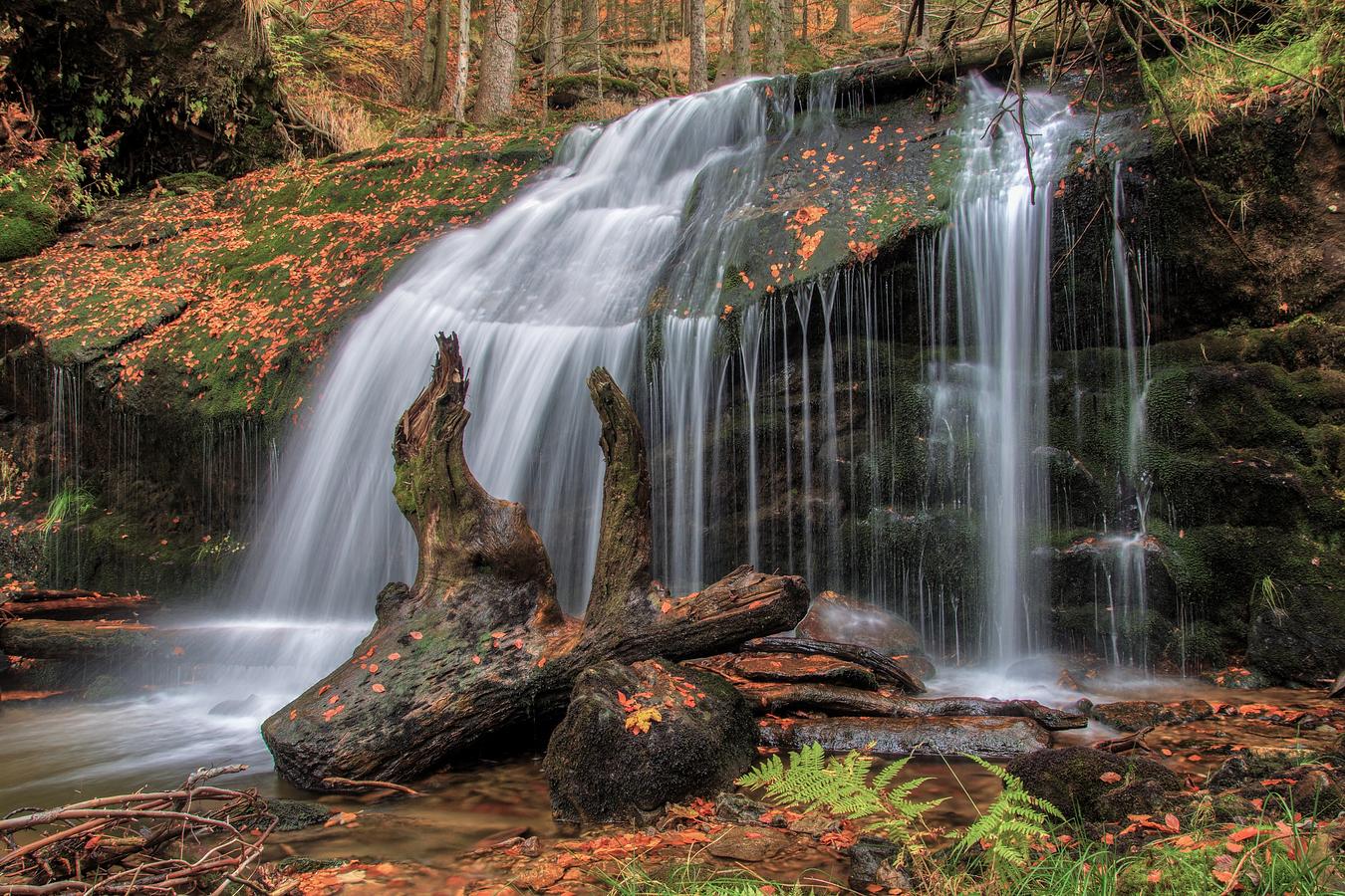 Vody Bavorského lesa