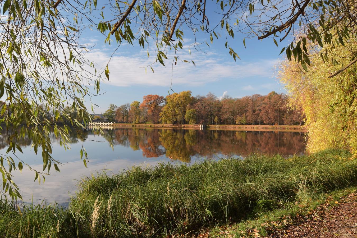 Dolnopočernický rybník
