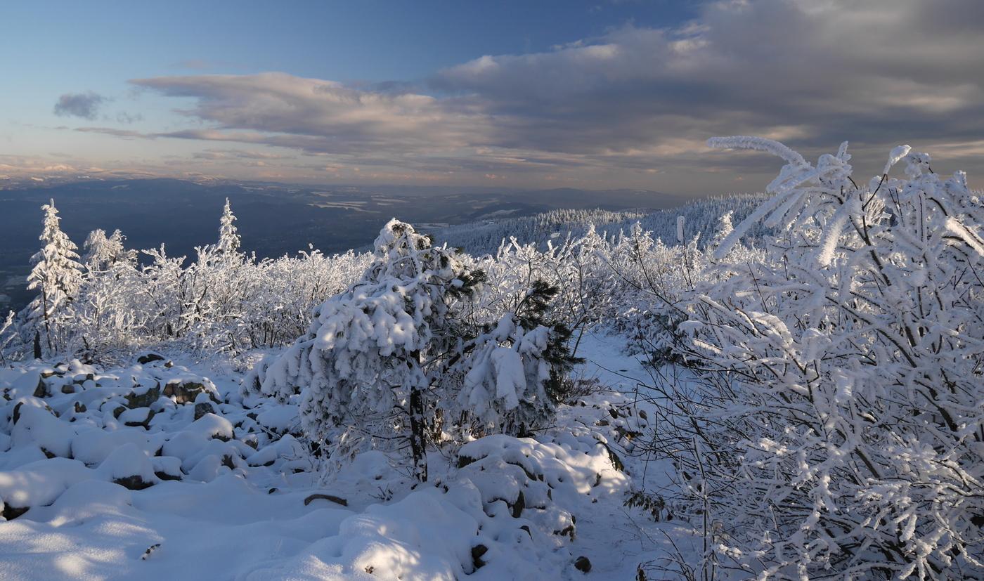 Listopadový sníh