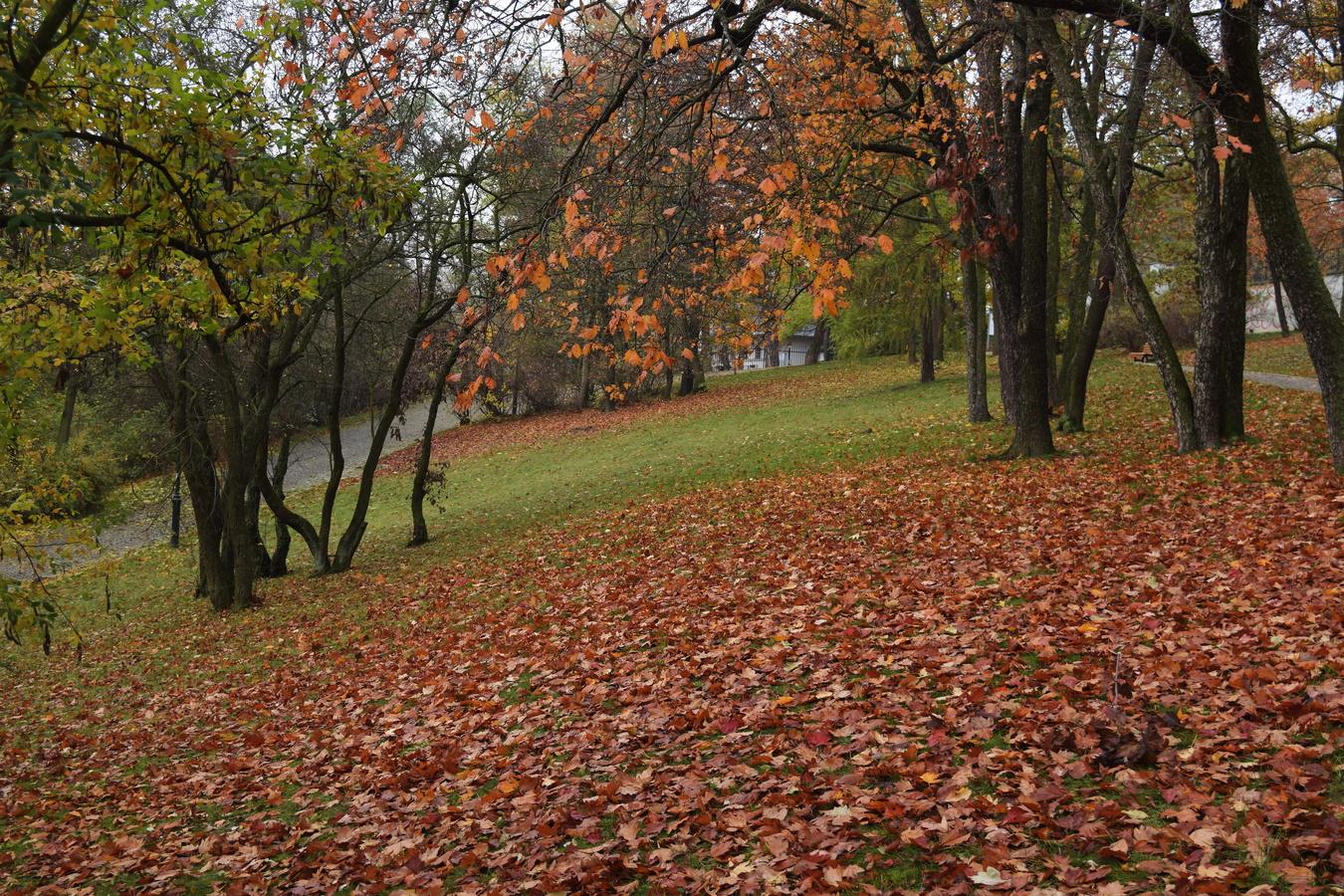 Barevný podzim 2