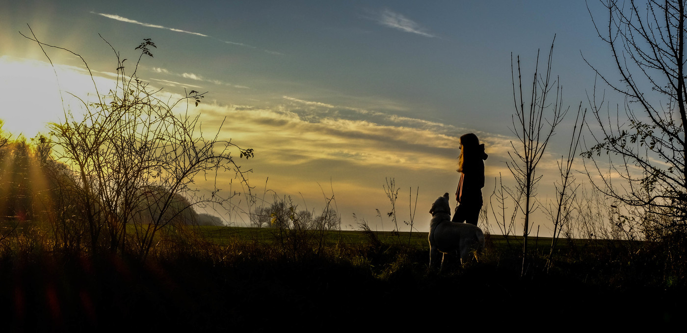 západ slunce, s nejlepším přítelem člověka...
