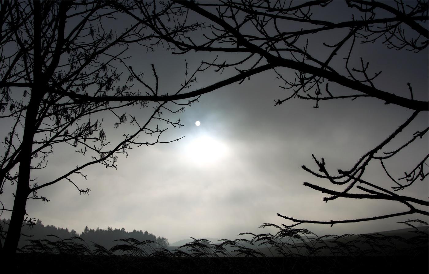Slunce v mlze