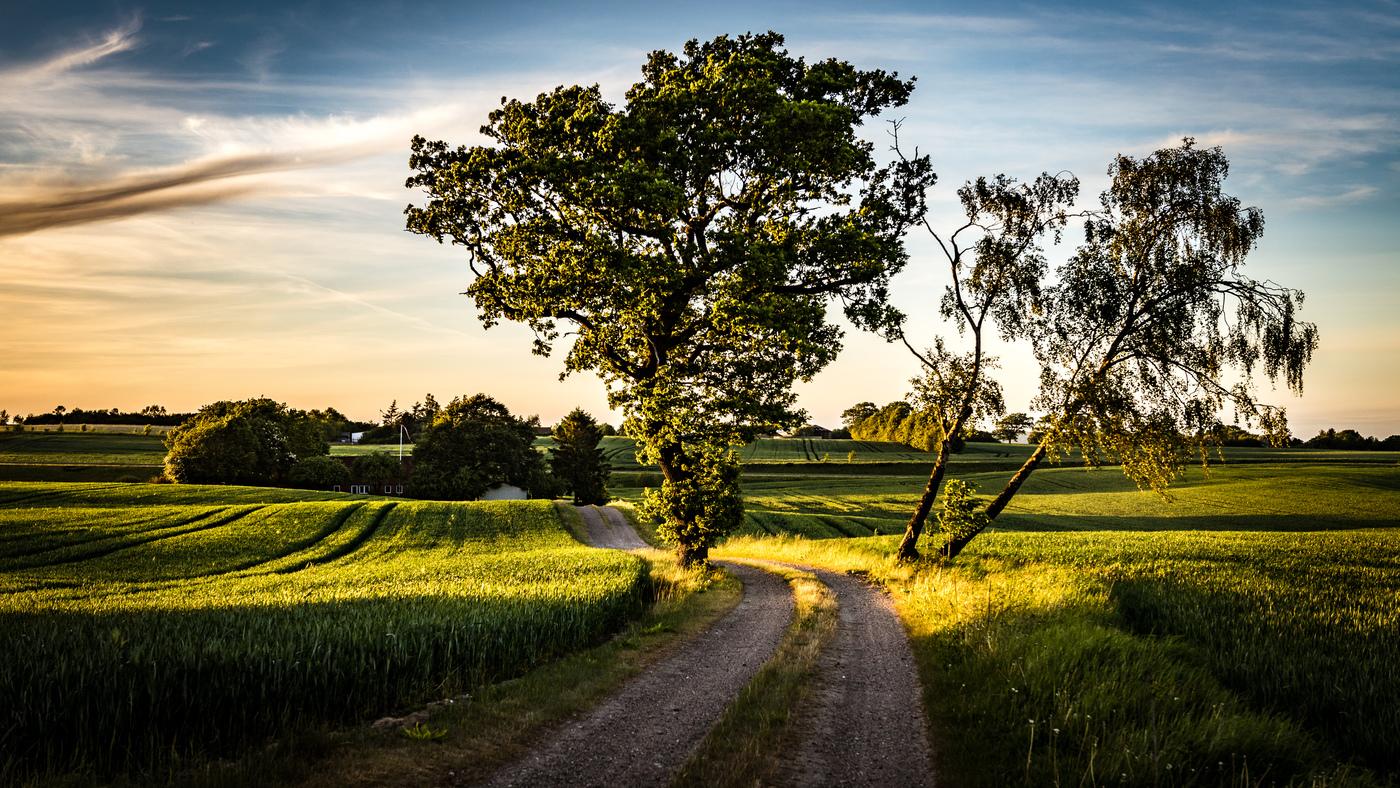 Domov Ody (Dánsko)