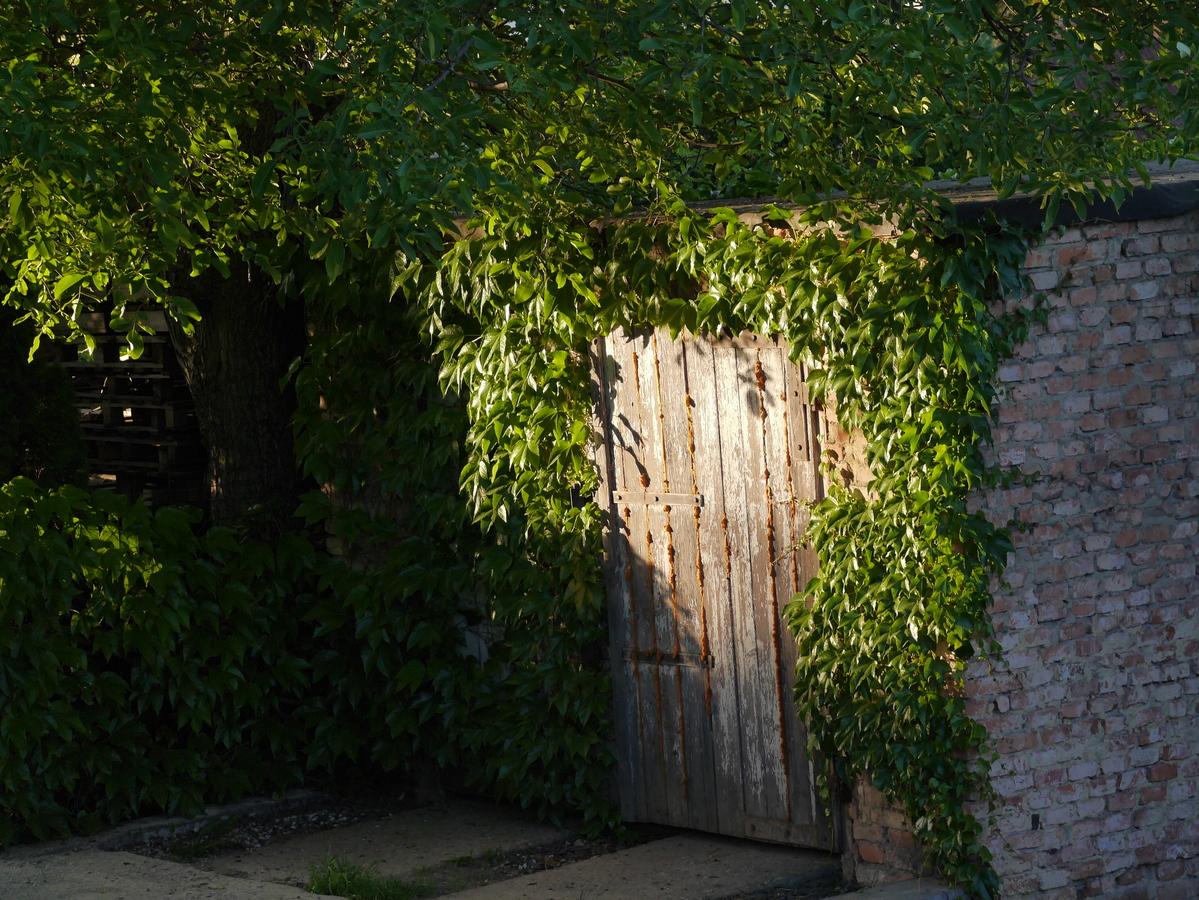 Stará garáž