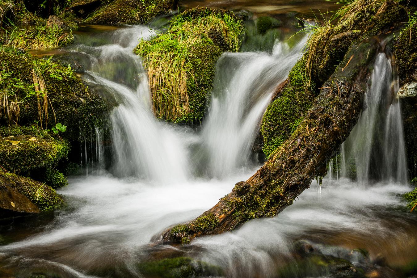 Svatopetrský potok