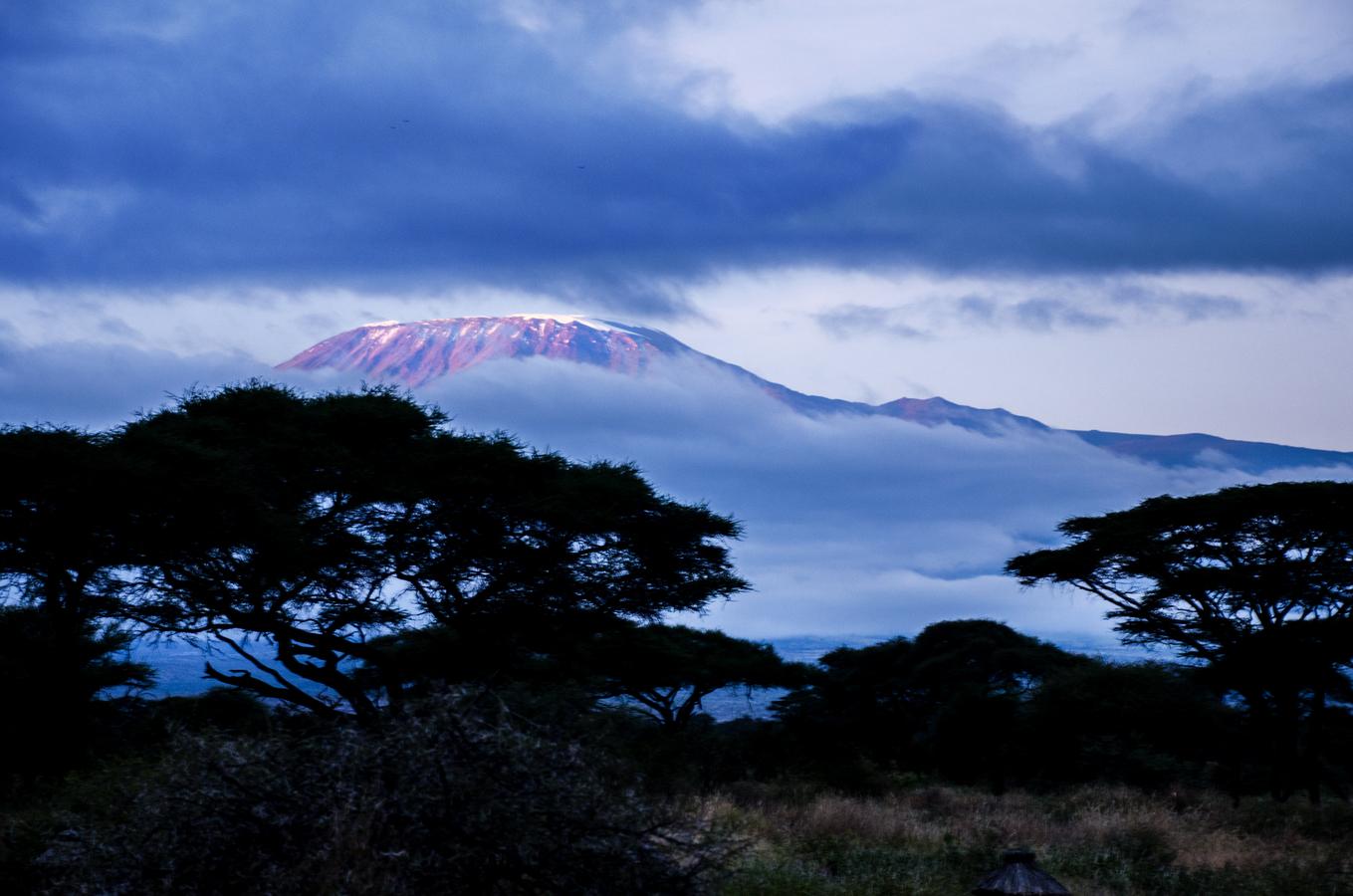 Svítání na Kilimandžáru