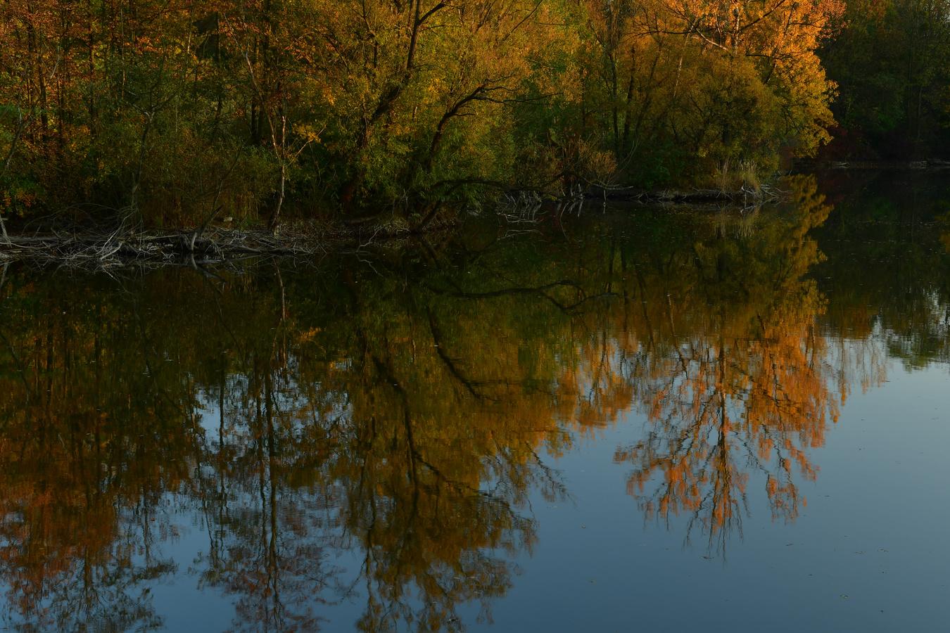 Podzimní rybník  Malvíny I