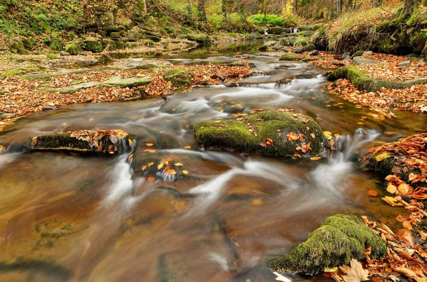 Řeka Mohelnice