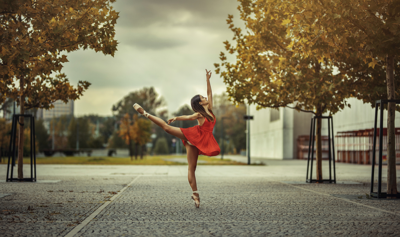 When you love ballet ...