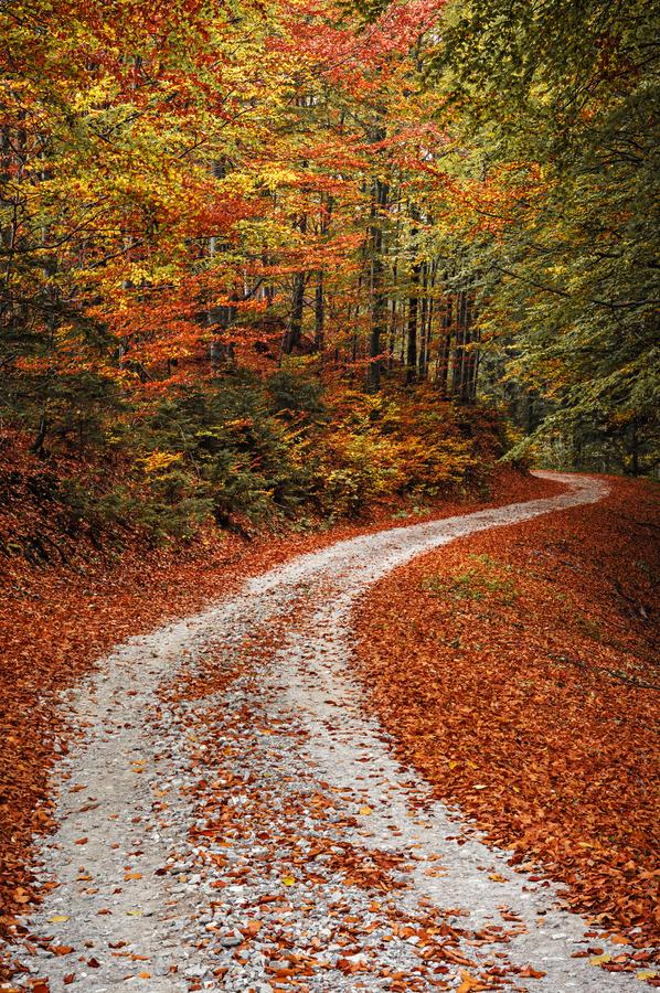 Podzim na procházce