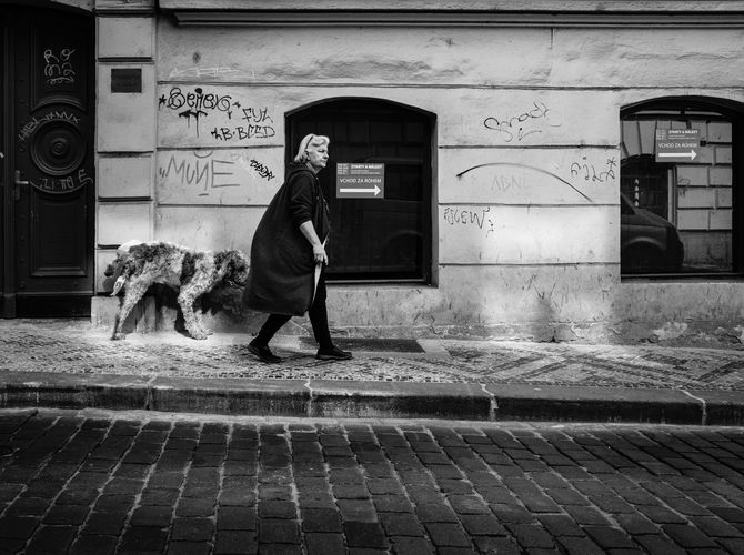 Venčení pražskou uličkou ...