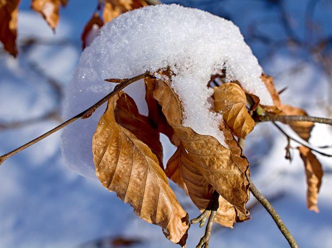 Zimní přikrývka...