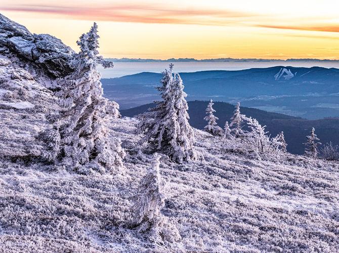 Pomrzlý vrchol