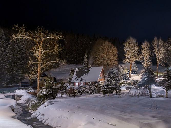 pod sněhovou peřinou