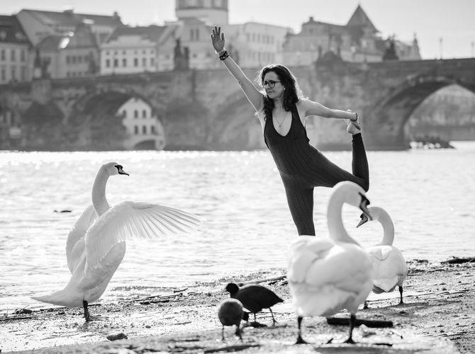 Tanec labutí...